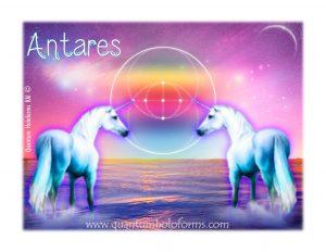 Códigos Antares, unicornios y pegasos